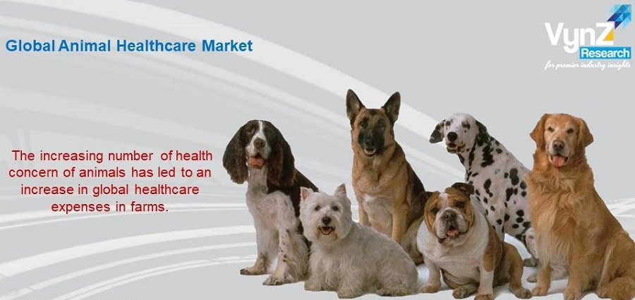 Animal Healthcare Market Highlights