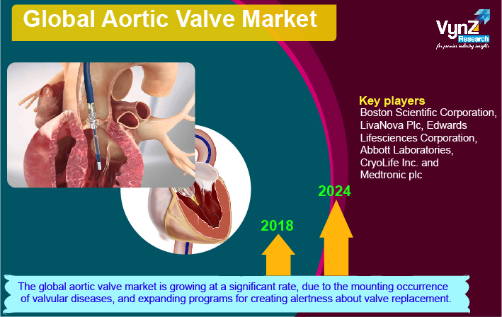 Aortic Valve Market Highlights