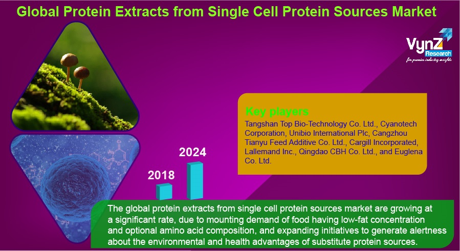 Protein Extracts from Single Cell Protein Sources Market Highlights