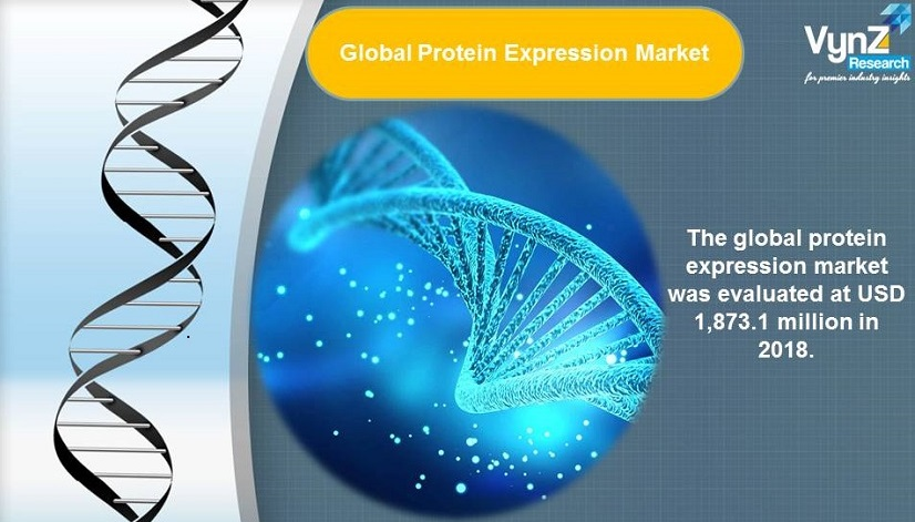 Protein Expression Market Highlights