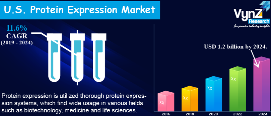 U.S. Protein Expression Market Highlight