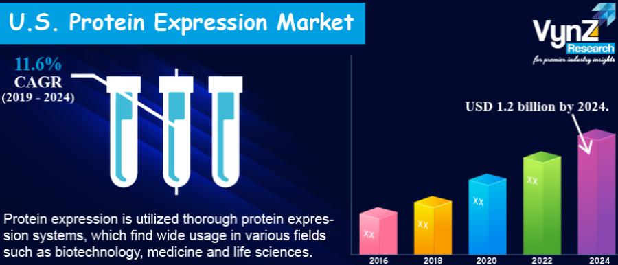U.S. Protein Expression Market Highlight